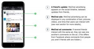 WeChat Official Account Verification | The Egg Company