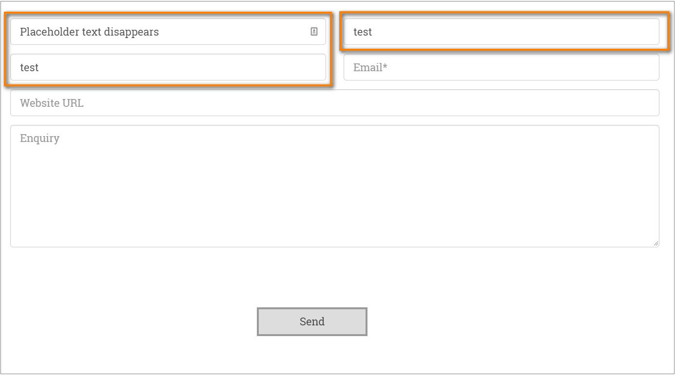 Form field with disappearing placeholder text