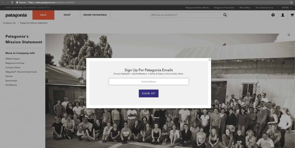 patagonia - email signup popup